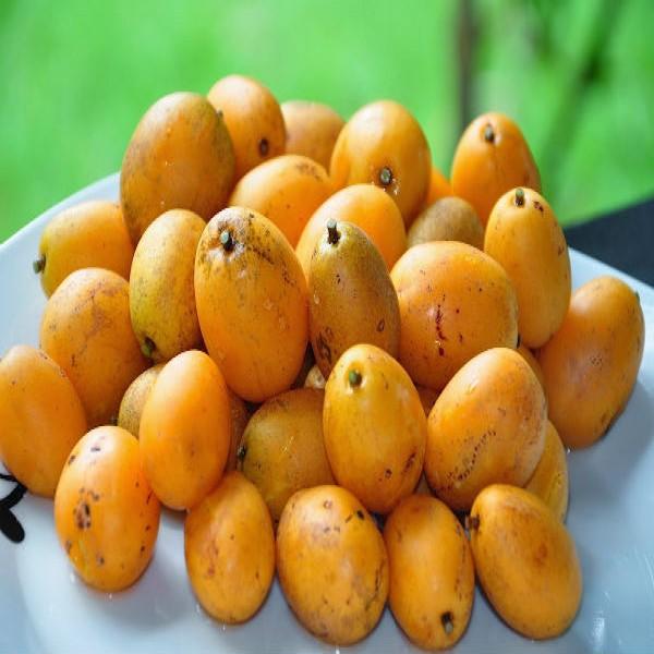 Caj uma fruta ex tica mundodastribos todas as tribos - Comprar cajas de fruta ...