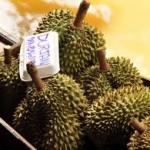 17109 jaca 8 150x150 Jaca: Fruta Rica em Saúde