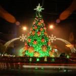 Decoração de Natal verde e vermelho (Foto: Divulgação)
