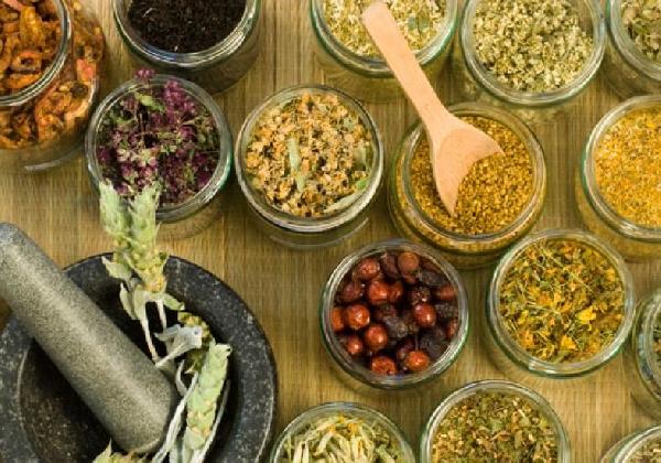 Existem plantas medicinais que ajudam a combater a rinite alérgica (Foto: Divulgação)