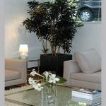 plantas-dentro-de-casa5