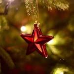 Estrela de Natal (Foto: Divulgação)