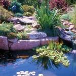 fotos de jardins de casas 4