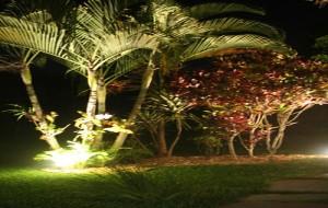 Iluminação para Jardim: Confira as Dicas