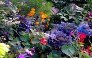Decoração de Jardim Requer Cuidados – Dicas