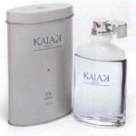 Perfumes Masculinos Bons e Baratos