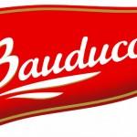 Trabalhe Conosco Bauducco, Cadastro de Curriculum