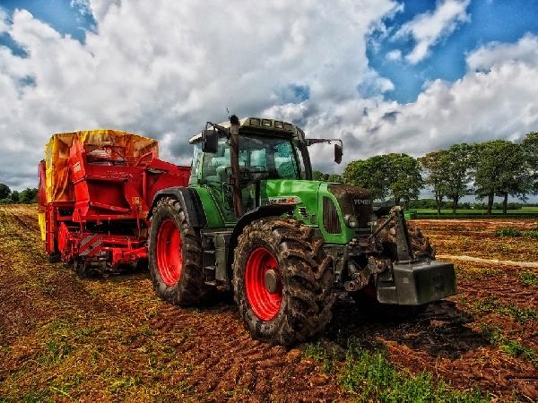 O curso de Agropecuária capacita o profissional para atuar na zona rural (Foto: Divulgação Pixabay)