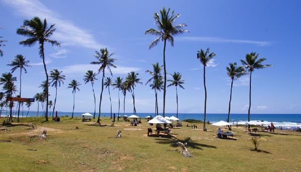 Praia Jardim de Alah tem ondas fortes e lindos coqueiros (Foto: CVC)