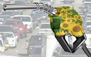 Curso Técnico em Biocombustíveis Gratuito IFBA