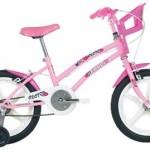 Bicicleta Caloi Infantil – Modelos e Preços