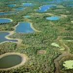 Pacotes de Pesca no Pantanal