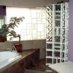 Tijolos De Vidro Para Banheiros Dicas, Fotos