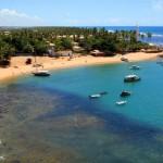 Pacotes praia do Forte Bahia Viagens