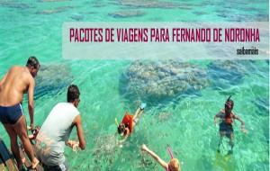 Pacotes turísticos CVC Fernando de Noronha