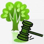 Pós-Graduação em Direito Ambiental