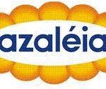 trabalhe conosco azaleia 2