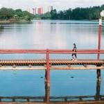 Lugares turísticos em Londrina