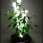 decoraçao.com.lampadas.coloridas.jpg8png