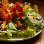 Curso de Culinária Vegetariana-9