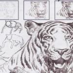 Curso de Desenho Online-8
