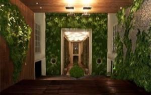 Jardim Vertical, Como Fazer