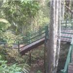 Lugares-Turisticos-em-Manaus-AM2