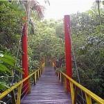 Lugares-Turisticos-em-Manaus-AM7