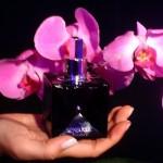 Perfumes Afrodisíacos do Boticário-4