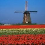 Turismo-na-Holanda-Lugares-Para-Conhecer-Roteiro3