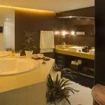 fotos de casas de luxo por dentro 3