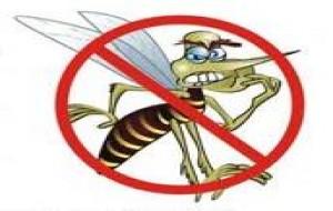 Sintomas e Tratamento da Dengue