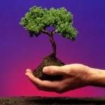 Curso EAD sobre Meio Ambiente