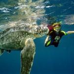 Pontos-Turisticos-Guiana-Francesa6