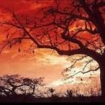 Viagem-Para-Angola-Dicas-Precos7