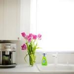 Decorar Cozinha Com Plantas Dicas