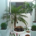 jardim interno como fazer 3