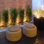 jardim interno como fazer 6