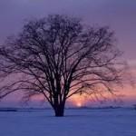 Protetor Solar no Inverno