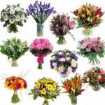 Flores para Homens Sugestões (1)