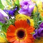 Flores para Homens Sugestões