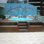 Golfinhos na parede proporcionam alegria ao ambiente