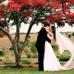 Ornamentação para Casamento Durante o Dia (2)