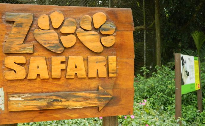 Simba Safari SP Localização, Horários, Preços (novo Zoo Safári) - (Foto: Divulgação Zoo Safári)