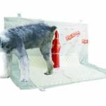 Tapetes Higiênicos para Cães – Onde Comprar