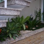 jardim de inverno embaixo da escada 6