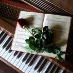 Músicas Ideais para Abertura de Casamento