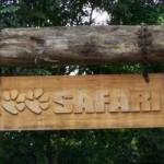 Simba Safari SP Localização, Horários, Preços
