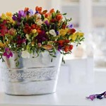 sala flores balde prata