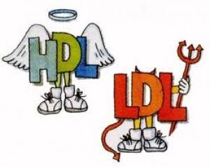 LDL...